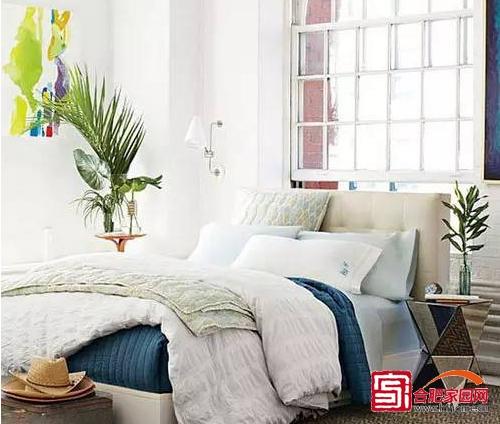 房间摆设了绿色植物,让房间充满生机