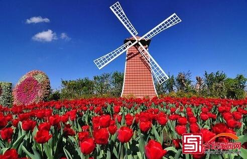 荷兰风车示意图